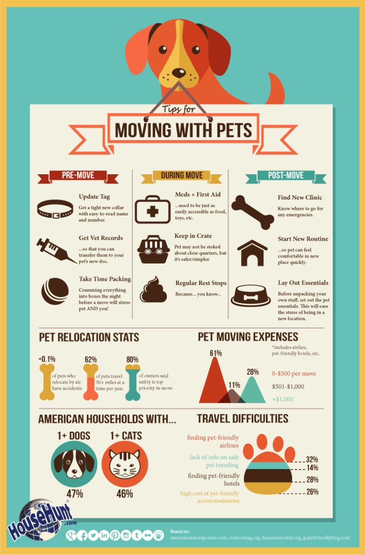 moving_with_pets_image_6